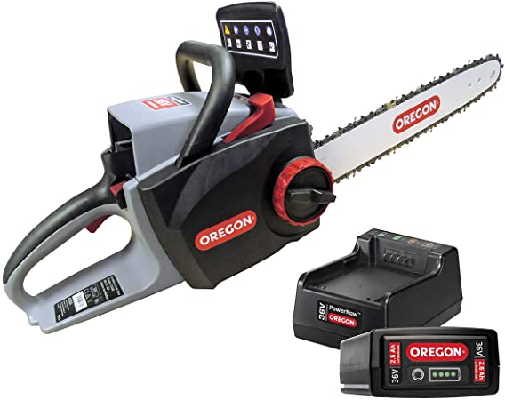 Oregon CS300 sans fil batterie lithium